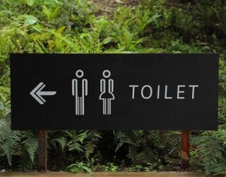 Community Asset Transfer of public toilets